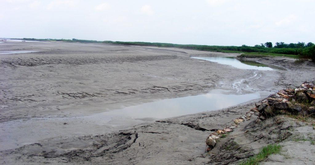 Silt deposits on the Kosi river, Bihar